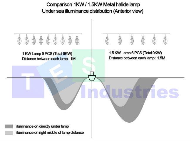 So sánh hiệu năng chiếu sáng bóng đèn câu mực