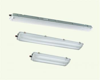Đèn huỳnh quang phòng nổ Series BnY81